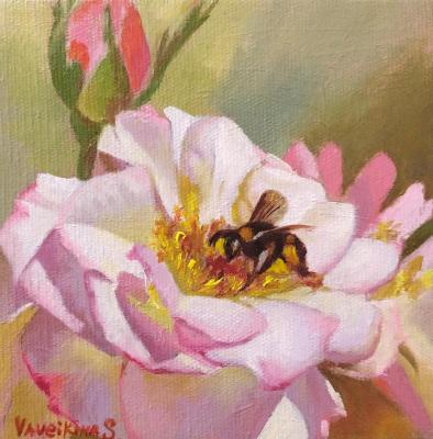 Garden rose and bee. Vaveykina Svetlana