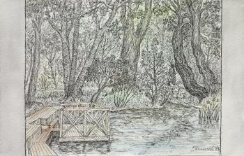 Pond in the Apothecary's garden. Chistova Olga