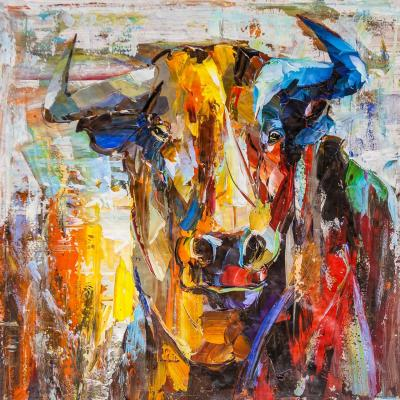 A bull named Taurus. Rodries Jose