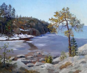 On the islands. Ladoga. Filippov Vladimir