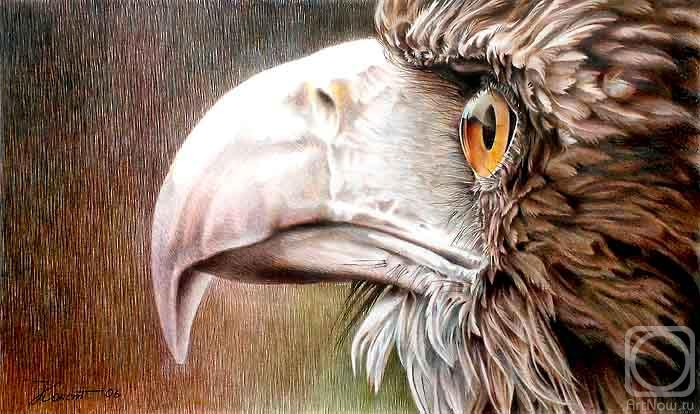 Konstantin Pavel. Eagle