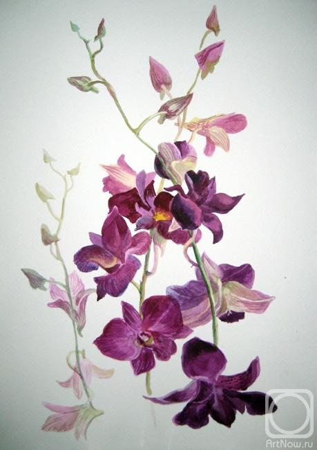 масло орхидеи.