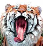 Константин Павел. Зевающий тигр