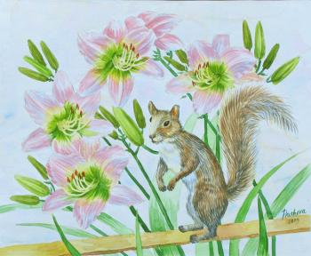 Squirrel and Pink Flowers. Piacheva Natalia