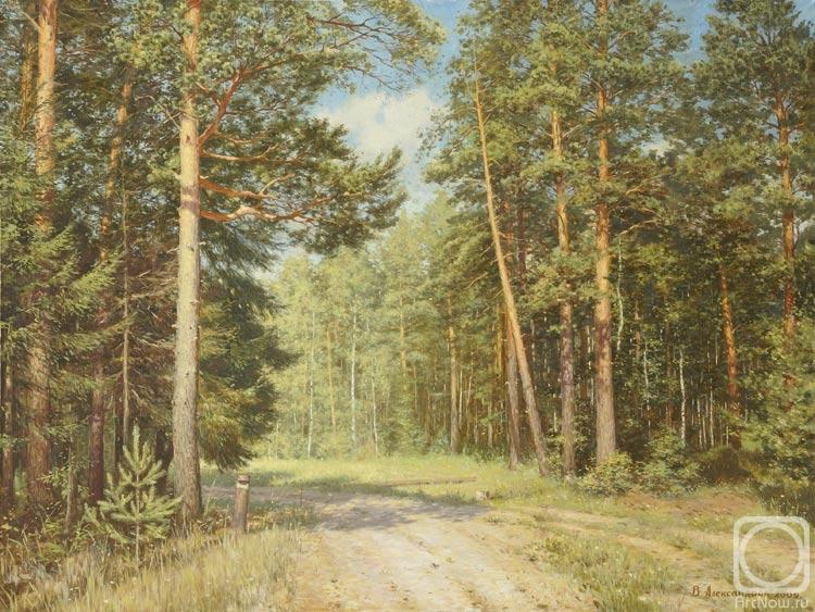 Александров Владимир. Дорога в лесу