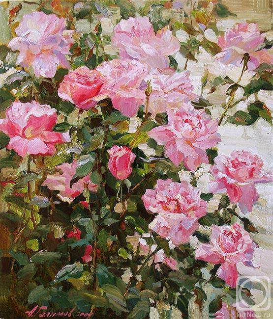 Галимов Азат. Розовая симфония