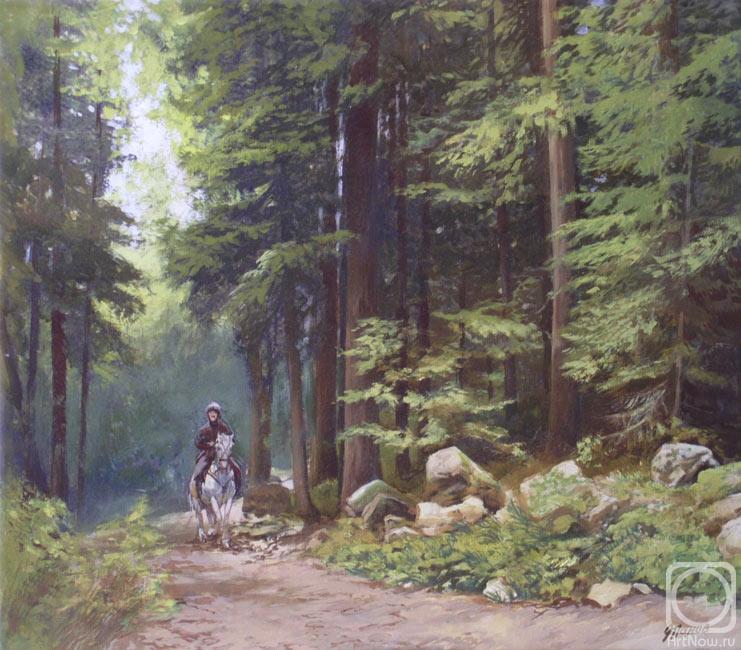Фото девушек в лесу в поле в деревне