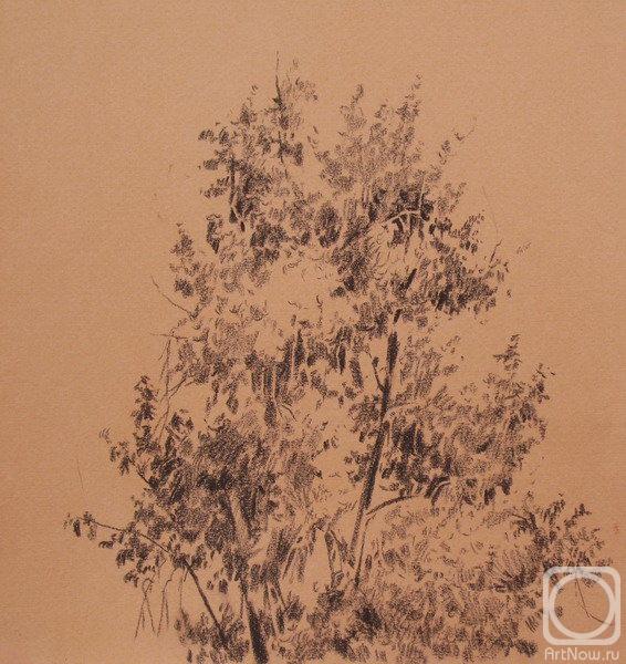 Кирьянова виктория рисунок дерева