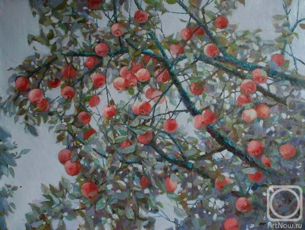 Макаров Антон. Молодильные яблочки