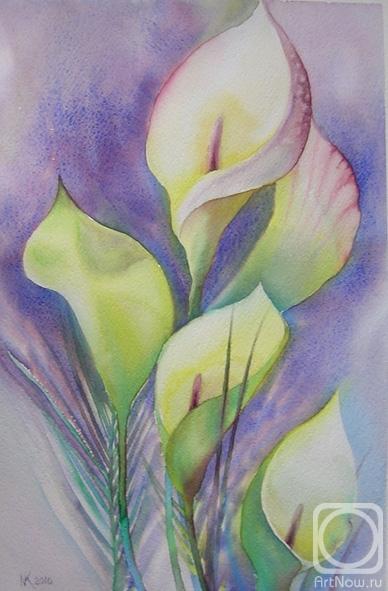 Картины художника цветы каллы