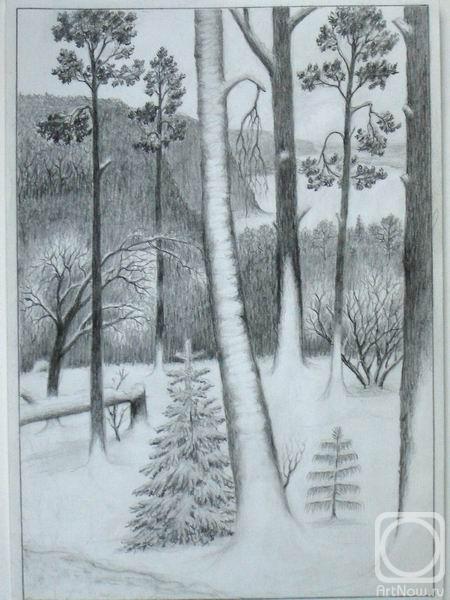 Картинки зимний лес для детей простым карандашом