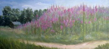 Field of willow-herb in the village Zavidovo. Krasnova Nina