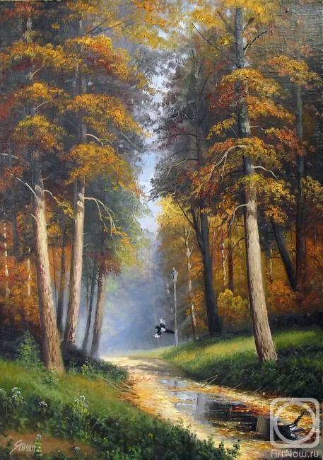 Сороки в парке.  Осенний пейзаж.