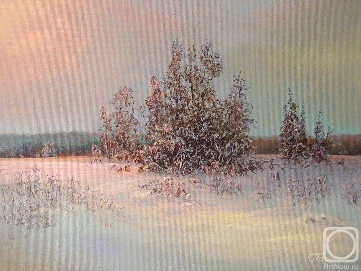 Панин сергей зимушка зима
