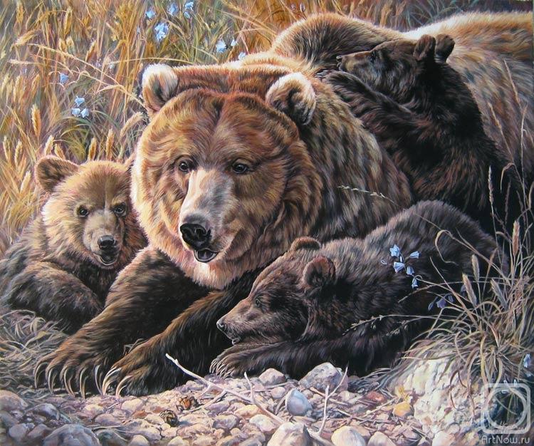 колготки медведь масло картинки черновом виде