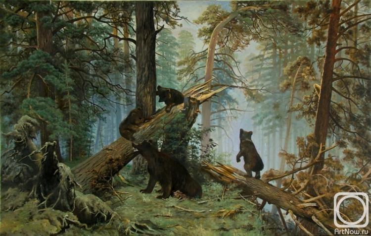 Фото утро в сосновом лесу