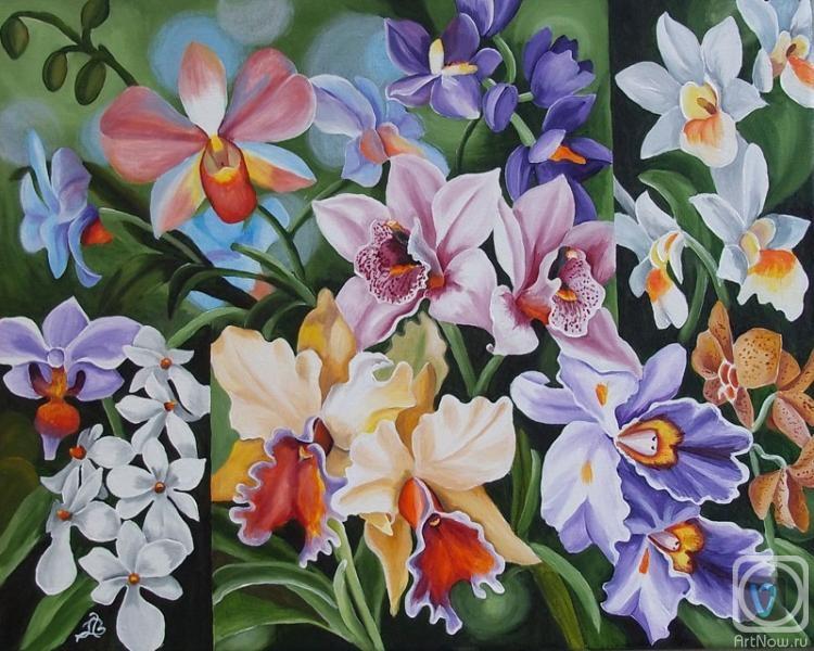 Lambeva Valentina. Mix-orchid