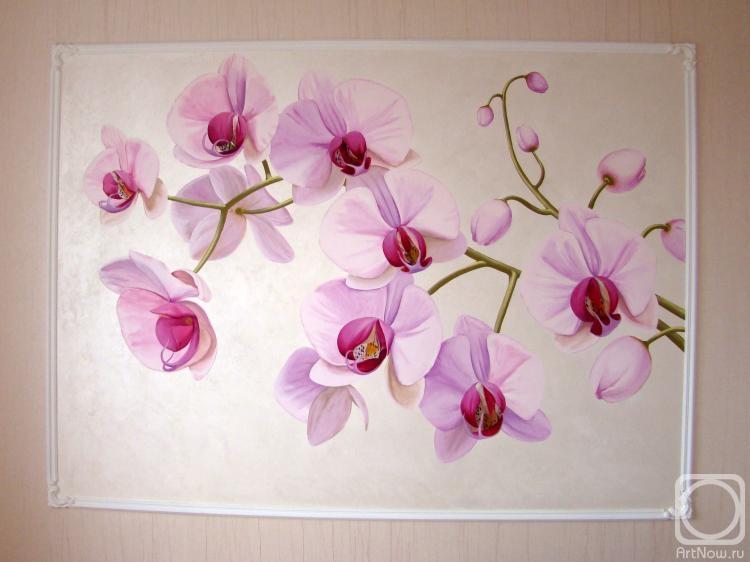 Цветы орхидеи на стене