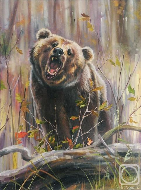 смартфона медведь масло картинки ландшафтном