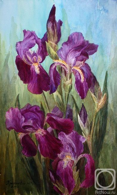 Краснова юлия лиловые ирисы
