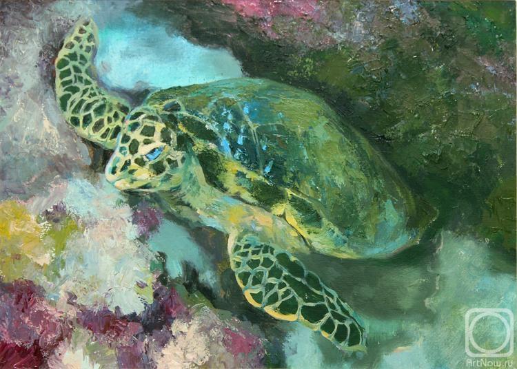 желаем картинки маслом подводного мира сорта юкки