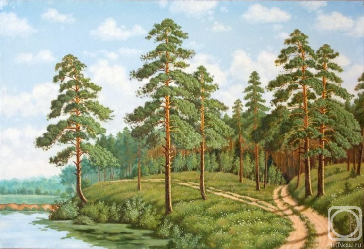 Рисунки сосновый