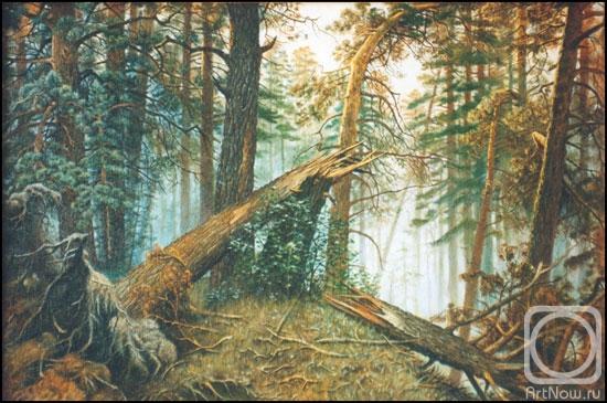 Картина утро в сосновом бору