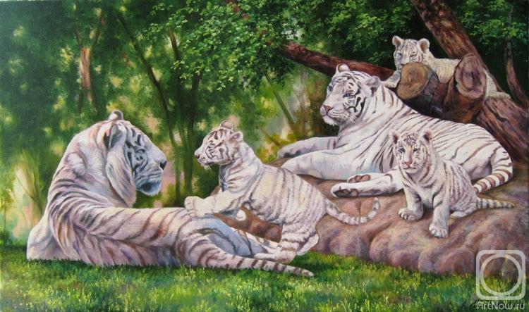 Самарская Елена. Семья белых тигров