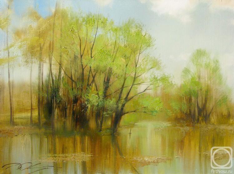 Орлов Дмитрий. Весенний разлив