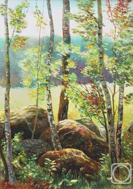 """Схема вышивки  """"Камни в лесу """": комментарии."""