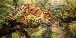 Дымчатый леопард. Бруно Августо