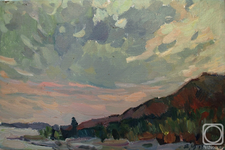 Zhukova Juliya. Coast at sunset