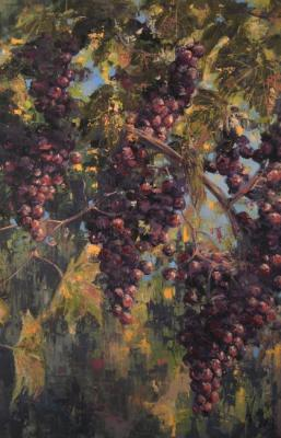 Grapes. Apazidis Dimitris