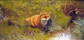 Fox of the fairy tale. Fyodorov Vladymir