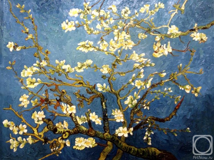 Bruno Augusto. Flowering almond branch (copy of Van Gogh)