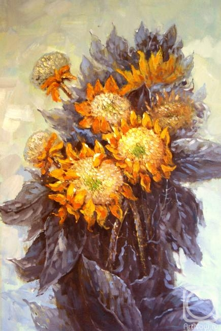 Bruno Augusto. Sunflowers