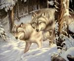 Волки. Минаев Сергей