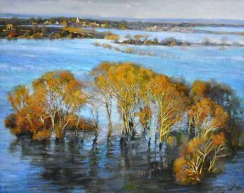 The flood of the Lena River. Zhukoff Fedor