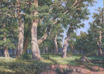 "Copy of II Shishkin's painting ""Oak Grove"". Luchkina Olga"